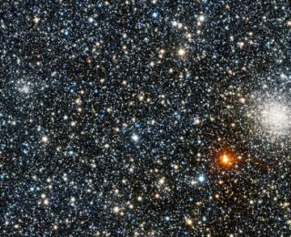 Globular Cluster Olympics: Who Will Win the Least Metals?