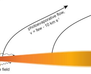 Psst… Forbidden Secrets in Windy Protoplanetary Disks