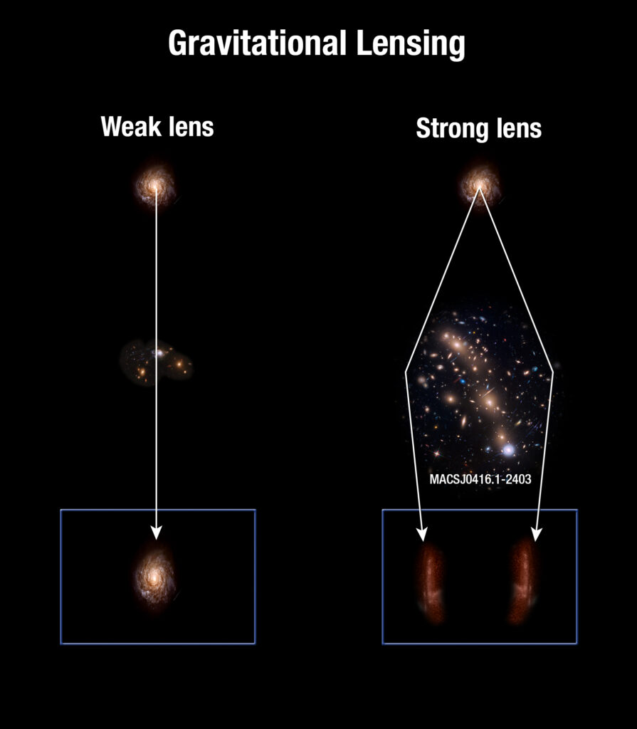 """At the top are the words """"Gravitational Lensing"""". Below, the image visually splits into two columns. The one on the left is titled """"Weak lens"""" and below that shows a circular galaxy. Below the galaxy is a small cluster of different galaxies, and below that is an image of the original circular galaxy, but its shape is distorted so it's more like a vertically-standing egg. A white arrow is drawn from the top circular galaxy, through the cluster, to the distorted galaxy to show that when there is a less-massive cluster of galaxies in front of a source, we see that source as slightly elongated (i.e. sheared). This is called weak lensing. On the right column is the opposite effect (strong lensing): we start with a circular galaxy at the top as before, but this time there is a very massive cluster in front of it. In this case there are two arrows stemming from the top galaxy that go around the cluster. Each arrow ends at a very dramatically elongated and redder image of the initially purely-circular galaxy, which now looks like two giant arcs."""