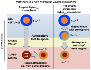 """A cartoon representation of the steps a Sub-Neptune can take while evolving into a Super-Earth. The image has the title """"Pathways to a high molecular-weight atmosphere"""" at the top, and is divided into three horizontal colour strips. A large, pale blue strip is at the top labelled """"SUB-NEPTUNES"""". Directly underneath that is a smaller pale yellow strip labelled """"RADIUS VALLEY"""", followed by a pale red strip the same size as the blue strip labelled """"SUPER-EARTHS"""". At the far left of the image an arrow points upwards and is labelled """"planet radius"""". The image is divided into a left and right half by a thin black line. The left side is labelled """"Exogenic high-molecular-weight atmospheres"""". In the blue strip a large blue circle containing a smaller orange circle represents a sub-Neptune and is labelled as mu approximately = 2. A large arrow points directly down from the sub-Neptune passing through the yellow radius valley into the red super-Earth region and is labelled """"Atmosphere lost to space"""". The arrow leads to a smaller red circle representing an atmosphere-less super-Earth labelled """"bare rock"""". An arrow points to the right from the bare rock to another circle of the same size surrounded by a very thin green atmosphere layer, representing a super-Earth with a water-dominated atmosphere. This super-Earth is labelled mu > 10, and the arrow leading to it is labelled """"Regain atmosphere e.g. from comet impacts"""". The right side of the cartoon is labelled """"THIS STUDY: Endogenous high-molecular-weight atmospheres"""". In the blue strip the same mu = 2 sub-Neptune represented by a large blue circle containing a smaller orange circle is seen as on the left, however a smaller arrow points to where the blue Sub-Neptune region and yellow Radius Valley strips meet. The arrow is labelled """"Magma reacts with atmosphere"""". Here, the orange circle representing the magma core of the Sub-Neptune is surrounded by a slightly larger circle shaded with a green and blue gradient and is labelled as"""