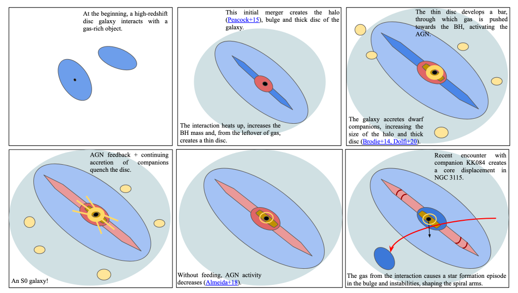 """An image of how a galaxy formed. It is broken up into 6 panels, each showing a different stage in the galaxy's formation. The top left image shows two blue ovals, the center one with a black dot in the middle and the second one to the upper right and slightly tilted from the central one. The text at the top left of the panel says """"At the beginning, a high-redshift disc galaxy interacts with a gas-rich object"""". To the right of that panel shows a large blue-gray oval (almost circular) taking up most of the panel. Inside the blue-grey oval is another oval, which is lighter blue and thinner, its major axis perpendicular to the larger oval's major axis. Inside this light blue oval is a smaller red oval whose major axis aligns with the light blue oval. From opposite ends of the red oval, 180 degrees from each other, are two darker blue shapes that look like the hands of a clock. At the top right of the panel there is text that says """"This initial merger creates the halo (Peacock+15) bulge and thick disc of the galaxy"""". At the bottom left of the panel is the text """"The interaction heats up, increases the BH mass and, from the leftover of gas, creates a thin disc"""". The panel to the left of this shows the same image comprised of ovals and shapes, but also adds in a dark golden bar within the red oval, a yellow donut also inside the red ellipse, whose center lines up with the black dot at the center of the image, and a few yellow ovals scattered throughout in the largest, grey-blue oval. The text at the top right says """"The thin disc develops a bar, through which gas is pushed towards the BH, activating the AGN"""". The text at the bottom left says """"The galaxy accretes dwarf companions, increasing the size of the halo and thick disc (Brodie+14, Dolfi+20)"""".  Moving on to the bottom row, at the very left is the same illustration as in the previous panel, but the components that look like clock hands are now colored light red, the scattered yellow ovals are in slightly different posit"""