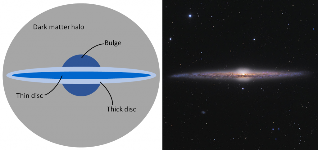 Image made up of two panels. Left panel shows a edge-on diagram of a disc galaxy, with a circular bulge overlaid by a thick stripe (the thick disc) and a thinner stripe (the thin disc). The whole galaxy is surrounded by a large circle, about five times the width of the bulge, representing the surrounding dark matter halo. Right panel shows a photo of an edge-on galaxy, showing the same shape as the schematic diagram.