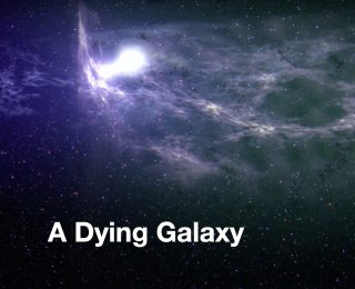Who Killed the Galaxies?