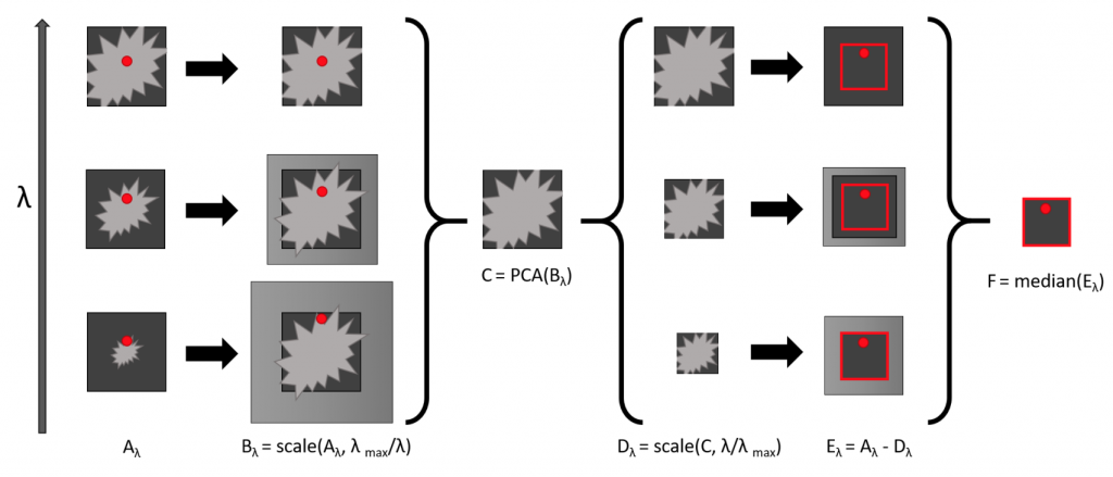 A diagram showing how spectral differential imaging works.