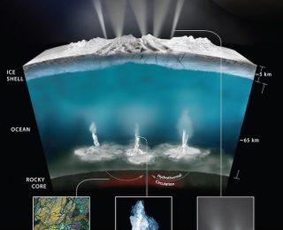 Quantifying signs of life in the depths of Enceladus' ocean