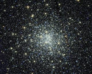 Uncovering black holes hiding in a globular cluster