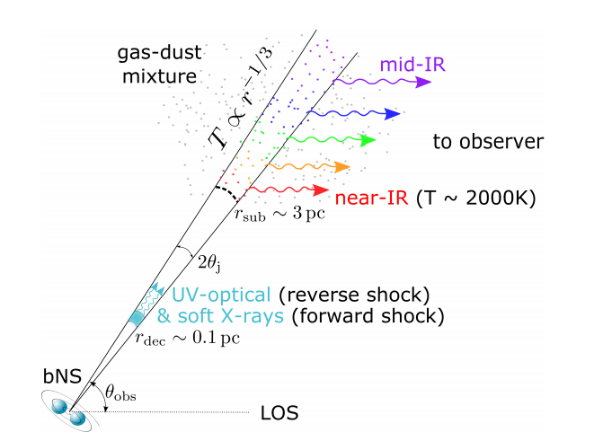 Diagram showing a jet from a neutron merger interacting with dust in the surrounding region. The jet appears as a conical beam, and arrows show the light being reradiated by the dust grains towards an observer.