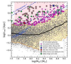 The galaxy mass-size relation for simulated and observed galaxies. There is an upward trend such that, generally, as galaxies get more massive, they become larger. The UDGs highlighted in the plot are outliers in that they are the largest galaxies in terms of size for their stellar mass.