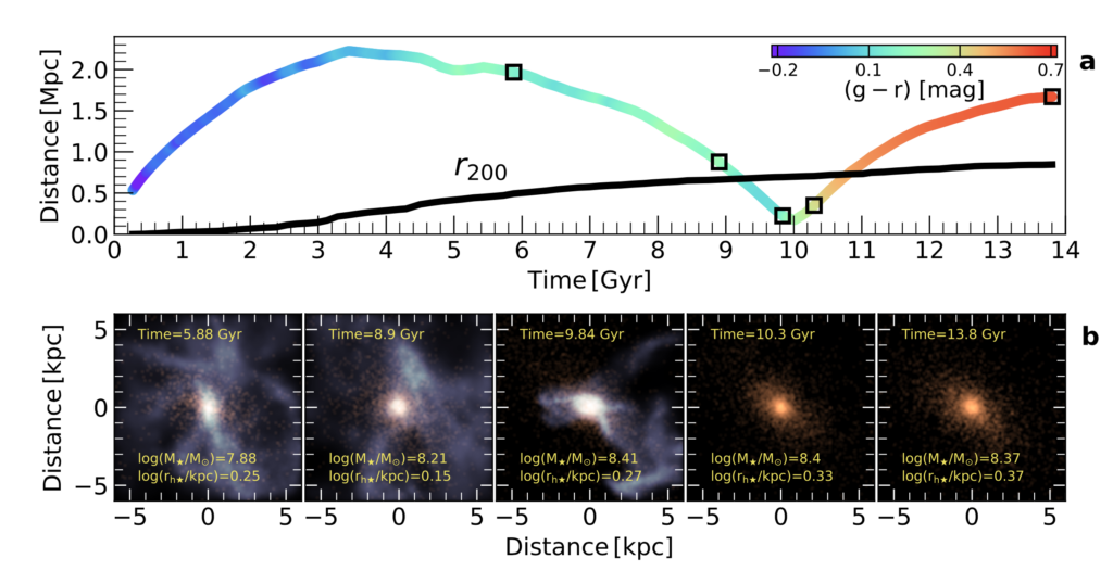 An example trajectory of a UDG is shown over the history of the Universe. It can be seen that the UDGs starts out as blue and star-forming, and over time as it moves closer to the galaxy group's centre, the UDGs reddens and becomes quence=hed. The second panel show 5 snapshots over cosmic time of the UDG.